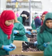 رسالة مؤسسة الحق بمناسبة يوم العمال العالمي