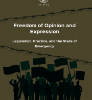Freedom of Opinion and Expression