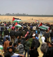 Al-Haq Submits Communication to the UN Special Procedures on Israel's Attacks against Peaceful Protesters in the Gaza Strip