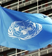 Palestine's UN Initiatives: Questions and Answers on the Representation of the Rights of the Palestinian People