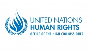 Joint Statement: Continued Delay of the UN Database by the UN High Commissioner for Human Rights, Unfounded and Unacceptable