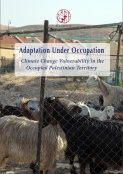 ADAPTATION UNDER OCCUPATION: CLIMATE CHANGE VULNERABILITY IN THE OCCUPIED PALESTINIAN TERRITORY