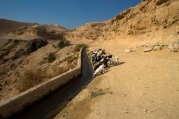 Photo: Wadi Qelt, Jericho. Bassam Almohor