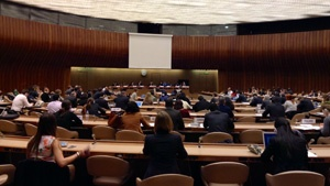 Al-Haq Attends Open Consultation on Development of States' National Action Plans on Business and Human Rights at the United Nations