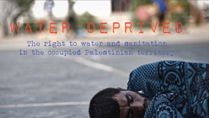 Water deprived: The right to water and sanitation in the occupied Palestinian territory