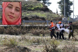 Palestinian Shot and Arrested in the West Bank
