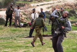 Al-Haq Special Focus: Settler Attacks in the West Bank