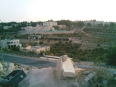Settler Violence Continues Across the West Bank
