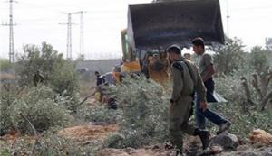 The Continued Dispossession of 'Azzoun 'Atma Village's Land