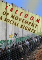 Freedom of Movement & Social rights