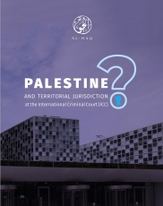 Palestine and Territorial Jurisdiction at the International Criminal Court