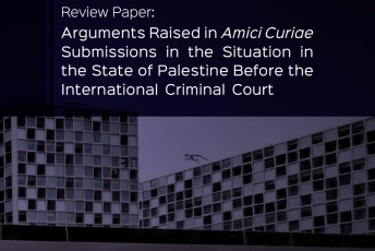 Response to Arguments Raised in Amici Curiae Submissions in the Situation in the State of Palestine Before the International Criminal Court