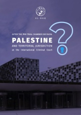 After the Pre-Trial Chamber Decision: Palestine and Territorial Jurisdiction at the International Criminal Court
