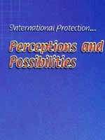 Discussion Paper on International Protection - Perceptions and Possibilities